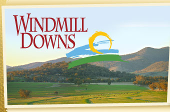 Windmill Downs
